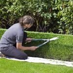 3 règles fondamentales pour l'entretien de son jardin